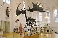 Hunting museum, Munich, Germany
