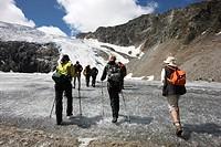 Hiking group hiking from Peiljoch alongside the Sulzen Glacier, Stubai Valley, Tyrol, Austria, Europe