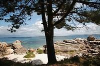 Area Grande Beach, O Grove, Galica, Spain, Europe.