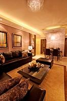 Modern Interior Design _ Living Room