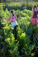 Two girls 6_9 years in vegetable patch, Lower Saxony, Germany