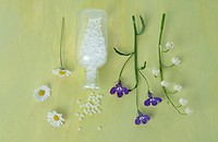 Daisy, globules, lily of the valley and edging lobelia