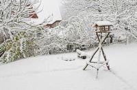 bird feeder in the garden in snow, Germany