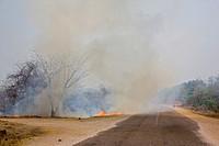 Bush fire in Zambia, Africa