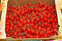 Cherry tomatoes  La Boqueria Market  Barcelona  Catalonia  Spain