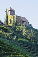 castle on the top of a hillside vineyard, alto adige, italy