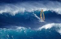 High angle view of a windsurfer in the sea, Hookipa, Maui, Hawaii, USA