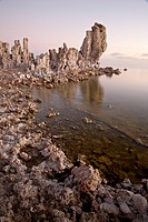 Tufa formations at first light, Mono Lake, California, United States of America, North America