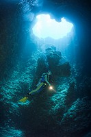 Taucher in Blue Hole Unterwasser_Höhle, Mikronesien, Palau, Diver in Blue Hole Cave, Micronesia, Palau