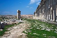 Roman city Apamea, Syria