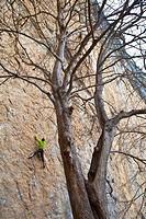 Climbers. Near of the Cave of Covalanas. Ramales de la Victoria. Ason Valley. Cantabria. Spain.