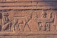Sunken_relief,Egypt