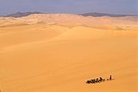shepherdess and herd in vastness of Arakao´s dunes,Aïr,Niger,Western Africa