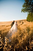 Newlyweds walking in wheat field in Umbria, Italy
