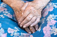 close-up of wrinkled hands of an old peasant woman from bohemia, czech republic