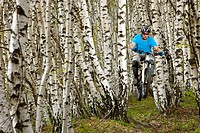 Italy, Lake Como, Mountain biker riding in the woods