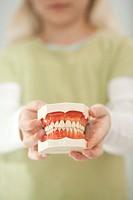 Germany, Bavaria, Landsberg, Girl 8_9 holding model of teeth
