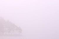 Scandinavia, Sweden, Vastergotland, Molnlycke, View of misty lake