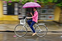 Vietnamese girl cycling in the rain, Hoi An, Vietnam