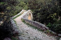 Romanesque bridge over Llierca river, Montagut de Fluvia, La Garrotxa, Girona province, Catalonia, Spain