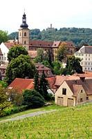 View over vineyard to St. James´ Church, Bamberg, Upper Franconia, Bavaria, Germany