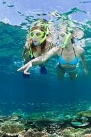 Skin Diving at Maldives, Maldives, Ellaidhoo House Reef, North Ari Atoll