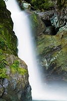 New Zealand, Southland, Fiordland National Park  The Hidden Falls cascade, found along the route of the Hollyford Track