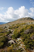 Appalachian Trail near Mount Clay in the White Mountains, New Hampshire USA