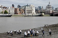 England, London, South Bank, Volunteers cleaning litter from the Thames shore line on the South Bank at low tide.