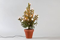 A small Christmas tree decorated with lights and baubles