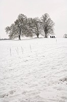 England, London, Highgate, A group of people making their way across a snow covered field in extreme winter conditions.