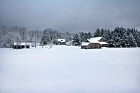 Farmhouses in a snow covered field, Michigan, USA