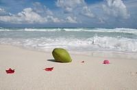 Beach Scenery at Tulum, Tulum, Yucatan Peninsula, Mexico