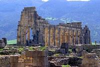 Morocco, Volubilis, forum
