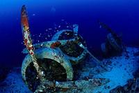 scuba diver at airplane wreck Savoia Marchetti SM 79_3, Kas, Lycia Region, Mediterranean Sea, Turkey