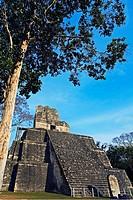 Temple II. Mayan ruins of Tikal. Peten region. Guatemala.