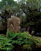 The Janus Stone, Boa Island Co Fermanagh, Ireland