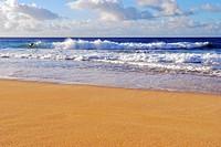 surfers on a Hawaiian beach
