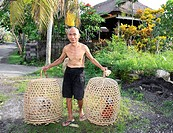 An old Balinese man with two of his fighting cocks in their baskets  The birds are put out near the edge of the road to get them accustomed to noise a...