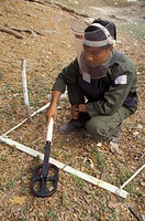 landmines, person, detecting, technician, cambodia, people