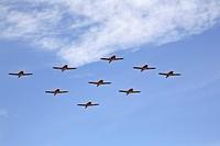 saskatchewan, aerobatics, scenic, flight, team, snowbirds
