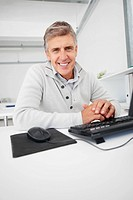 Portrait of a handsome mature business man sitting in front of a computer