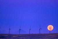 Wind turbines on a hill, Alberta, Canada