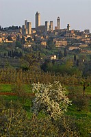 View at the old town with genera towers in spring, San Gimignano, Tuscany, Italy, Europe