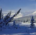 Kootenay River valley in winter, Kootenay National Park , Rocky Mountains, British Columbia, Canada