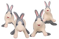 Rabbits against white background