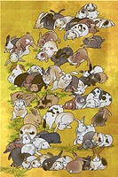 Large group of rabbits relaxing
