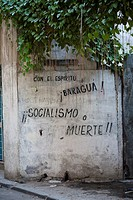 Cuba, Havana, Vieja, Socialist graffiti