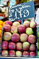 Central Market of Saragosse  Aragon  Spain  Europe