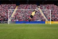 Goalkeeper saving a goal
